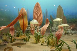 ancient-ocean-life