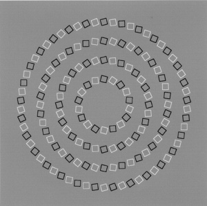 intertwine circle illusion