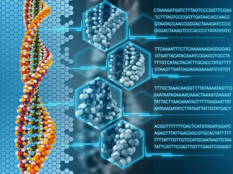 DNA: The Ultimate Hard Drive | Mr. Barlow's Blog