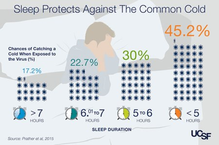 Sleep boosts immunity