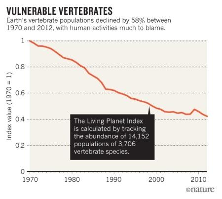 vertebrate population decline.jpg